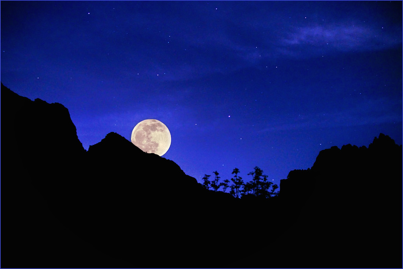 Zion Moonrise
